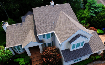 How Roofing Professionals Can Give a Bird's Eye View on Repairs
